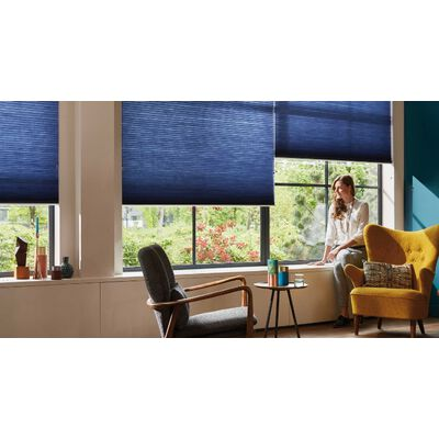 B0016 pleated blinds